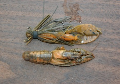 match the hatch bass fishing with crawfish baits
